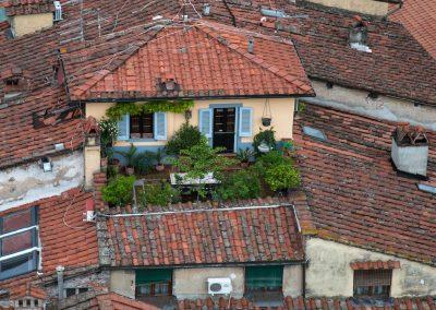 Über den Dächern von Lucca - Susanne Bormann