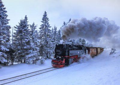 Kress-Christine_Lok im Schnee_FdM_2017-02